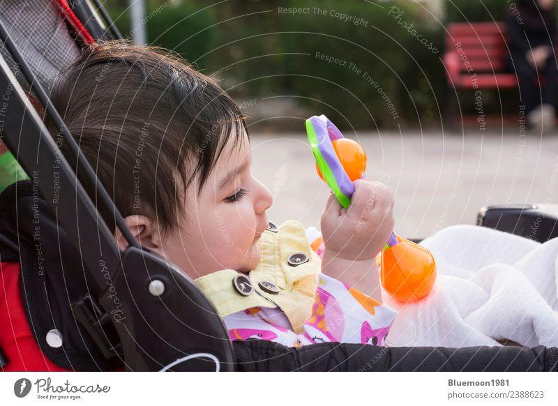 Kind Mensch Natur schön Blume rot Erholung Leben Frühling Gefühle Park Verkehr Kindheit sitzen genießen Baby
