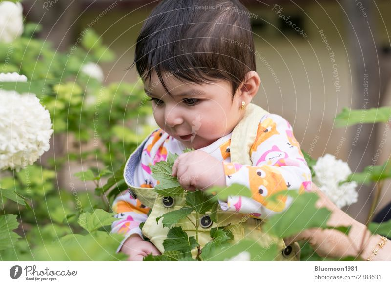 Kind Mensch Natur Pflanze schön grün weiß Blume Erholung Blatt Freude Gesicht Leben Wand Gesundheit Frühling