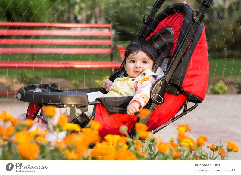 Kind Mensch Natur Pflanze Farbe schön Blume rot Erholung Einsamkeit ruhig Freude Lifestyle Leben gelb Umwelt