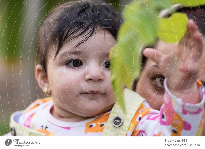 Das kleine Baby berührt neue Frühlingsblätter in der Umarmung ihrer Mutter. Lifestyle schön Leben Kindererziehung Mensch Frau Erwachsene Eltern