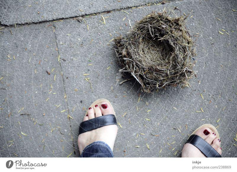trauriges Ende Natur Sommer Gefühle Fuß Stimmung liegen natürlich kaputt trist Trauer Vergänglichkeit Ende Bauwerk unten entdecken Zerstörung