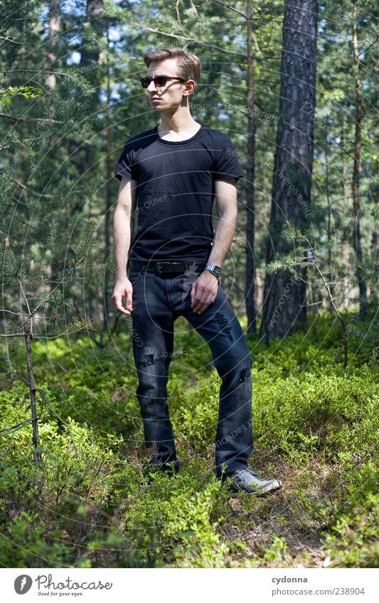 Wood-Style I Mensch Natur Jugendliche schön Baum Sommer ruhig Erwachsene Wald Erholung Umwelt Leben Stil träumen Zeit elegant