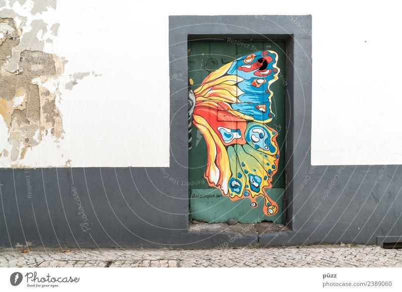 Butterfly exotisch Ferien & Urlaub & Reisen Tourismus Ausflug Sightseeing Städtereise Sommer Sommerurlaub Insel Häusliches Leben Wohnung Haus Kunst Künstler