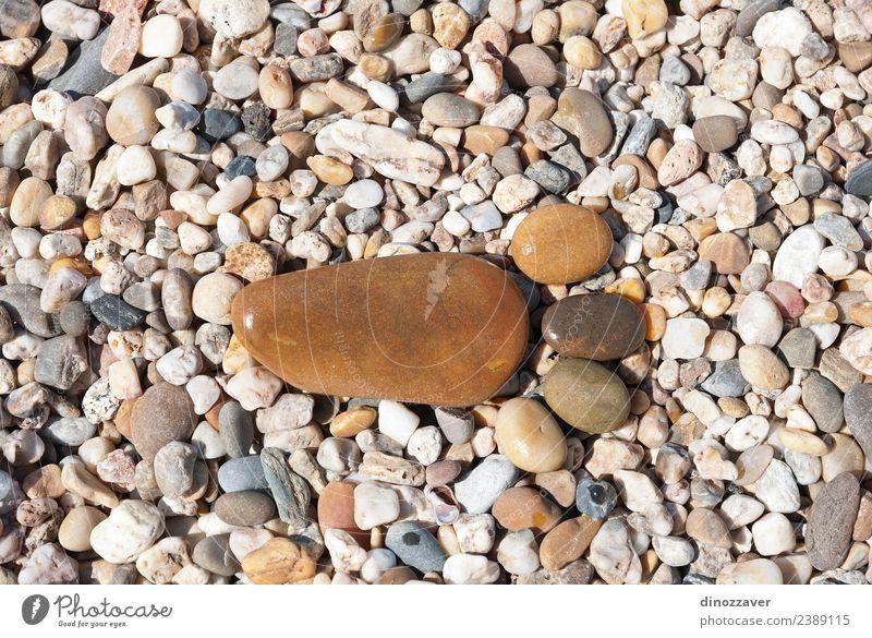 Steine in Form von Footprint Design Freude Ferien & Urlaub & Reisen Strand Mensch Fuß Natur Sand Felsen Pfote Rost Fußspur Zusammensein natürlich braun gelb