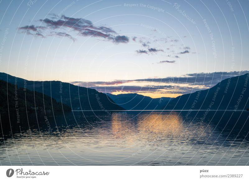 Fjord Angeln Ferien & Urlaub & Reisen Ausflug Abenteuer Ferne Freiheit Umwelt Natur Landschaft Urelemente Luft Wasser Himmel Klima Wetter Schönes Wetter Baum