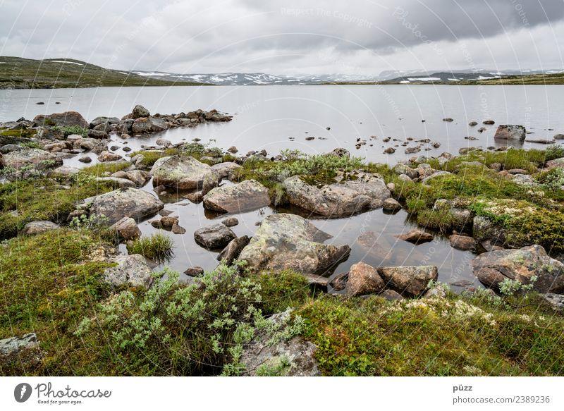Norwegen Angeln Ferien & Urlaub & Reisen Tourismus Ausflug Abenteuer Ferne Freiheit wandern Umwelt Natur Landschaft Pflanze Urelemente Wasser Himmel Wolken