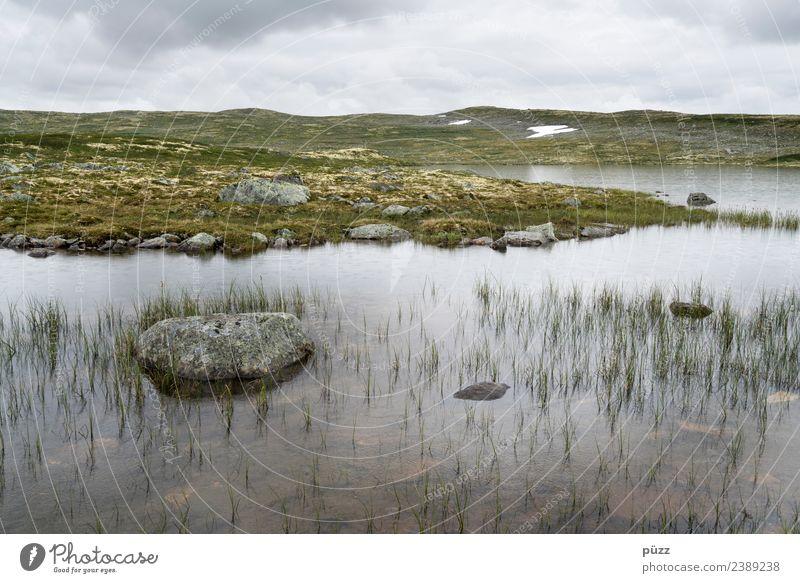 ||| Wasser ||| Himmel Natur Ferien & Urlaub & Reisen Pflanze grün Landschaft Erholung Wolken ruhig Ferne Berge u. Gebirge Umwelt Küste Gras Tourismus