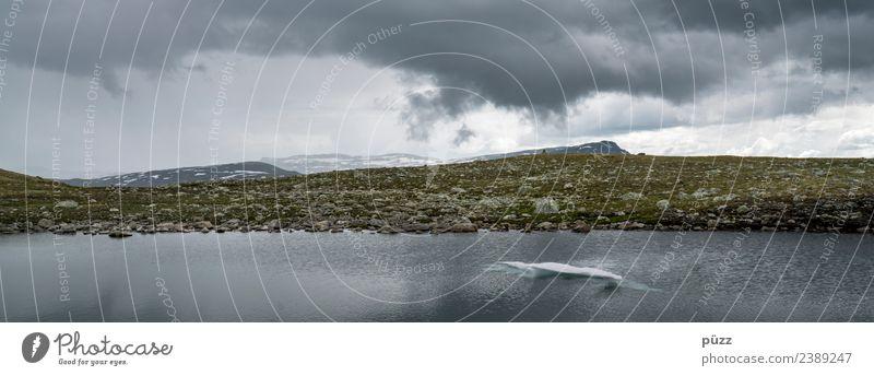 Scholle Ferien & Urlaub & Reisen Ausflug Abenteuer Ferne Freiheit Schnee Umwelt Natur Landschaft Urelemente Erde Wasser Himmel Wolken Gewitterwolken Wetter Moos