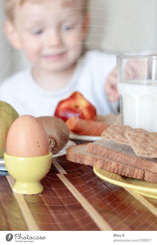Guten Appentitti Mensch Kind Ernährung Lebensmittel Kopf Essen Gesundheit Kindheit Frucht Fröhlichkeit Getränk Lächeln Gesunde Ernährung Apfel Kleinkind Brot