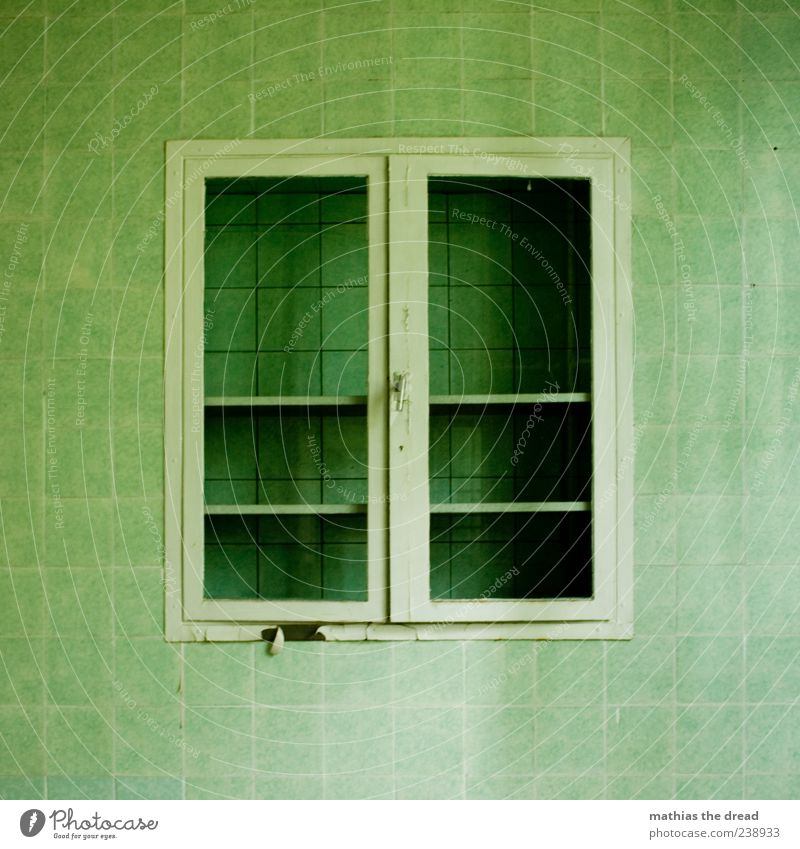 QUADRATISCH PRAKTISCH GUT alt grün schön ruhig Wand Architektur Mauer Gebäude Linie geschlossen leer Fabrik Bauwerk Fliesen u. Kacheln Quadrat Ruine