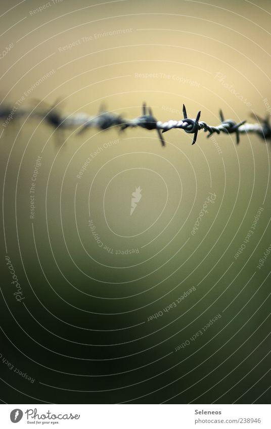 Angst und Bange bedrohlich Zaun Barriere gefangen Aggression Knoten stachelig Stachel Stacheldraht Stacheldrahtzaun einsperren