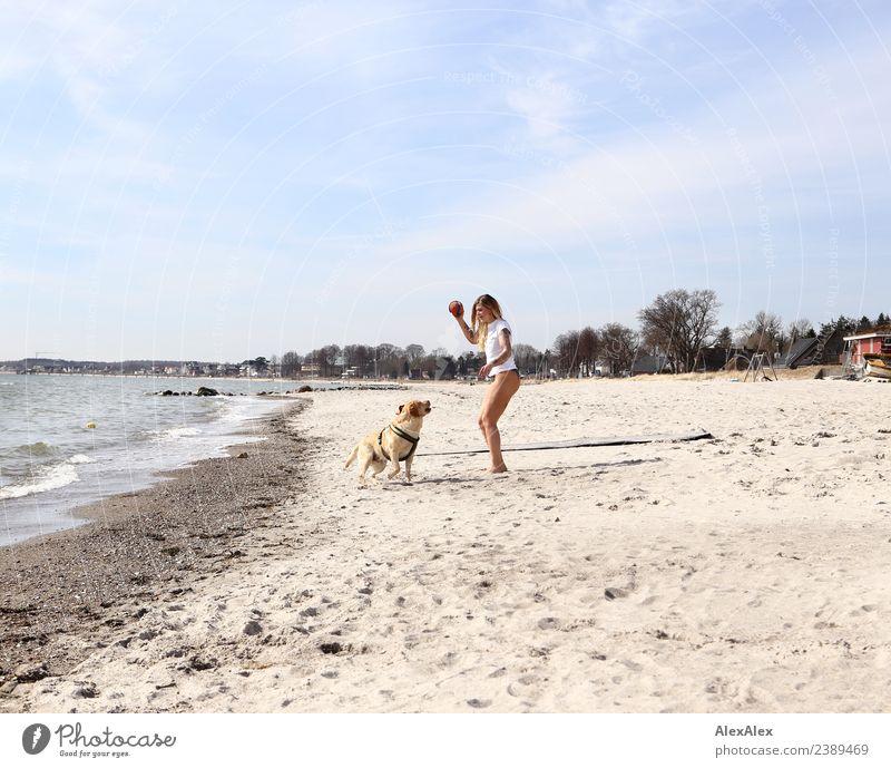 Frau spielt Ballwerfen mit blondem Labrador am Ostseestrand Jugendliche Junge Frau schön Landschaft Meer Freude Strand 18-30 Jahre Erwachsene Lifestyle Leben
