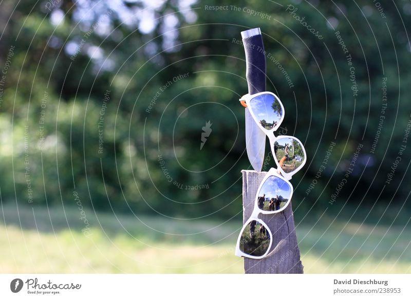 Messerschutz Sommer Sonnenbrille Holz schnitzen Farbfoto Außenaufnahme Tag Licht Kontrast Reflexion & Spiegelung Lichterscheinung Sonnenlicht Unschärfe