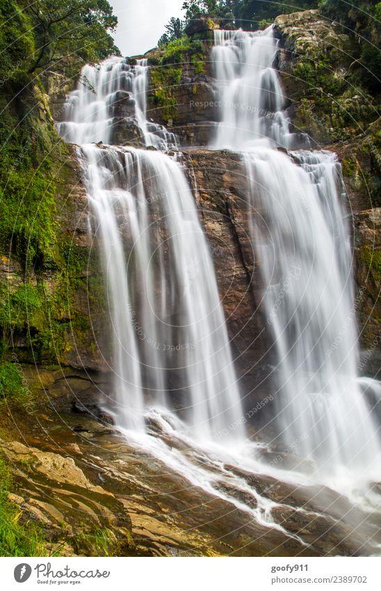Ramboda Falls Sri Lanka Ferien & Urlaub & Reisen Tourismus Abenteuer Ferne Expedition Berge u. Gebirge Umwelt Natur Landschaft Wasser Urwald Felsen Fluss