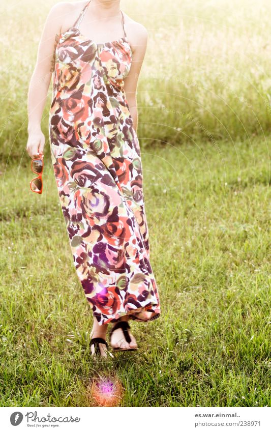 malerei. Mensch Frau schön Sommer Erholung Wiese feminin Gras Freiheit Stil träumen Zufriedenheit elegant laufen frei frisch