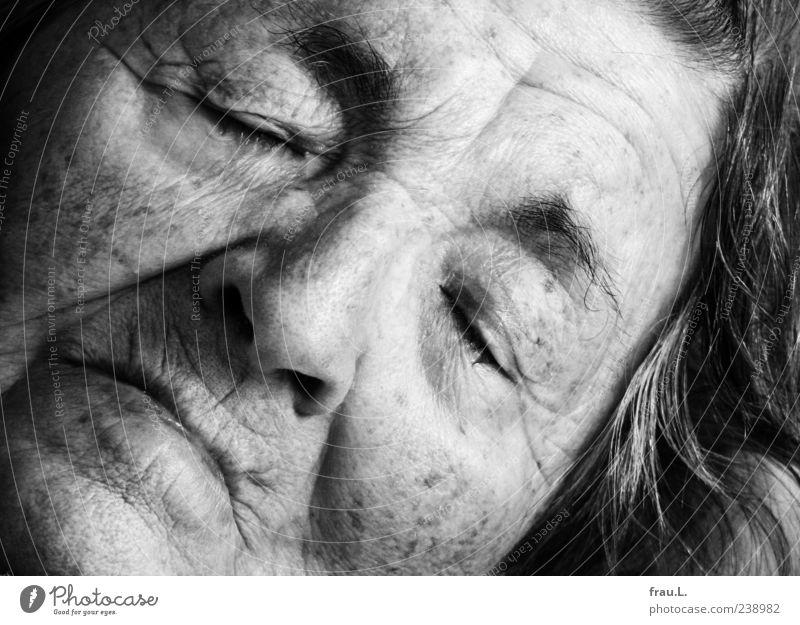Vom Leben und Sterben Mensch Frau alt schön ruhig Erwachsene Gesicht feminin Senior Gefühle schlafen Vergänglichkeit Hautfalten 60 und älter Vergangenheit Müdigkeit