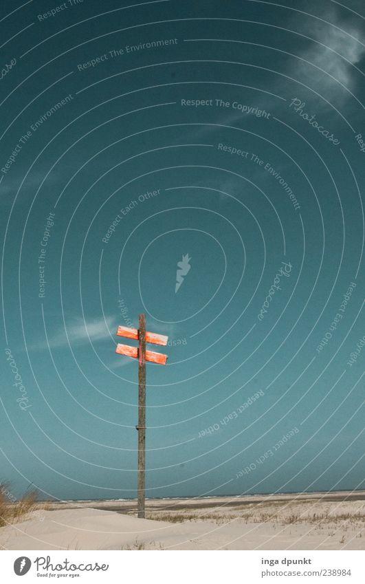 ParticulaDay Himmel Natur blau Ferien & Urlaub & Reisen schön rot Pflanze Meer Strand Wolken Einsamkeit Umwelt Landschaft kalt Wege & Pfade Luft