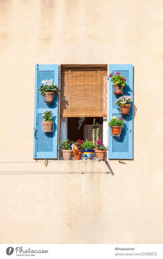 Fenster mit blauen Rollläden und Blumen Stil schön Ferien & Urlaub & Reisen Sommer Haus Dekoration & Verzierung Kultur Gebäude Architektur Fassade Stein Holz
