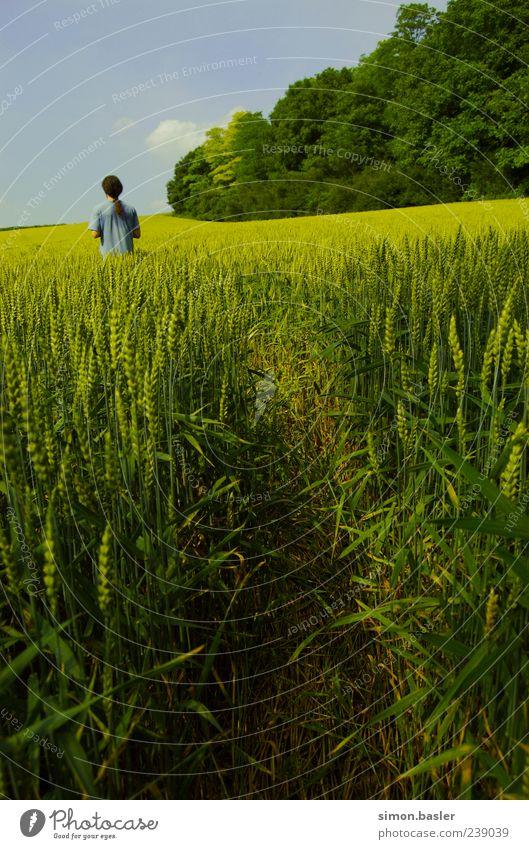 Wohin.. ?! Mensch Himmel Natur Sommer Einsamkeit ruhig Umwelt Leben Feld maskulin T-Shirt Schönes Wetter einzeln langhaarig Nutzpflanze Waldrand