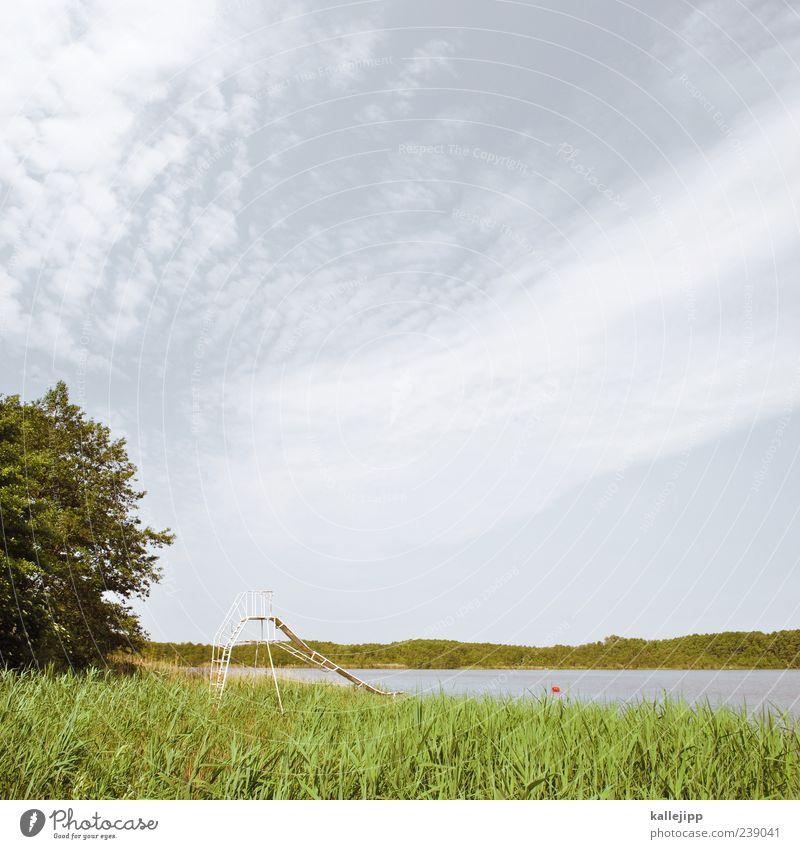 auf die rutsch Himmel Natur Wasser Baum Sommer Wolken ruhig See Freizeit & Hobby Schwimmbad Seeufer Schilfrohr Spielplatz nachhaltig Rutsche Freibad