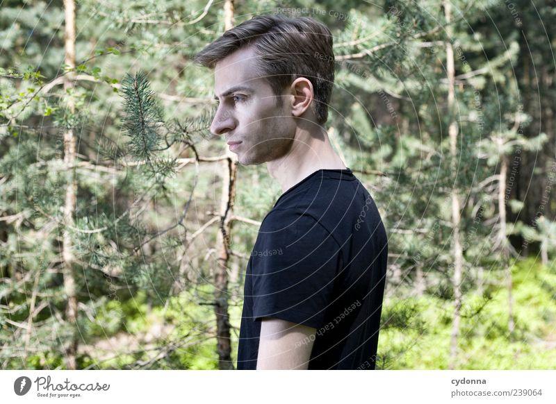 Klare Gedanken Mensch Natur Jugendliche schön Baum Einsamkeit ruhig Erwachsene Wald Erholung Umwelt Leben Freiheit Stil träumen elegant
