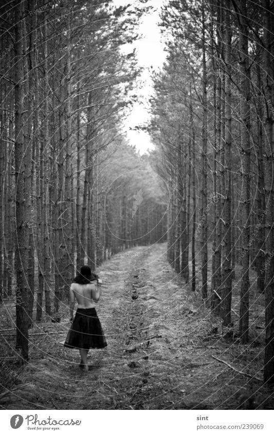 heimweg Mensch Natur Jugendliche Sommer Einsamkeit ruhig Erwachsene Wald Erholung dunkel feminin Bewegung träumen Zufriedenheit Rücken Junge Frau