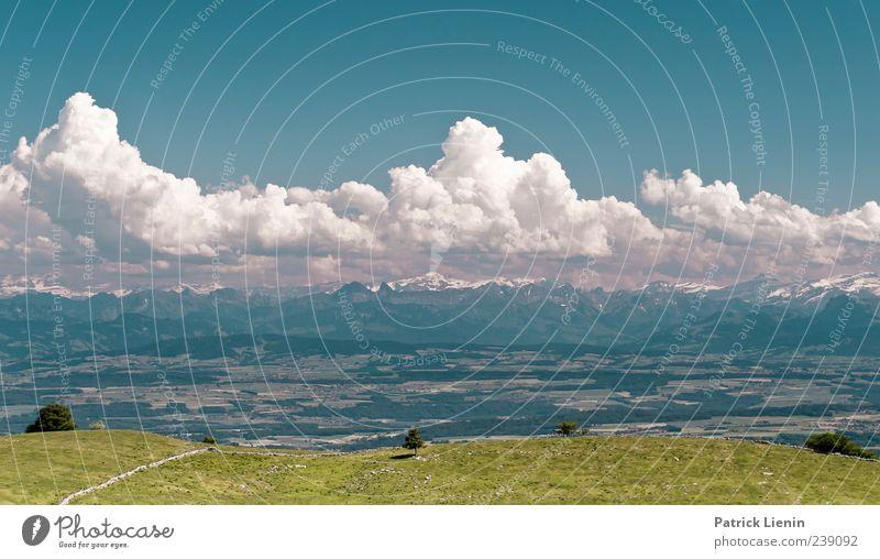 Times like these Himmel Natur Ferien & Urlaub & Reisen schön Wolken Ferne Umwelt Landschaft Wiese Berge u. Gebirge Freiheit Luft Stimmung Wetter Freizeit & Hobby Ausflug