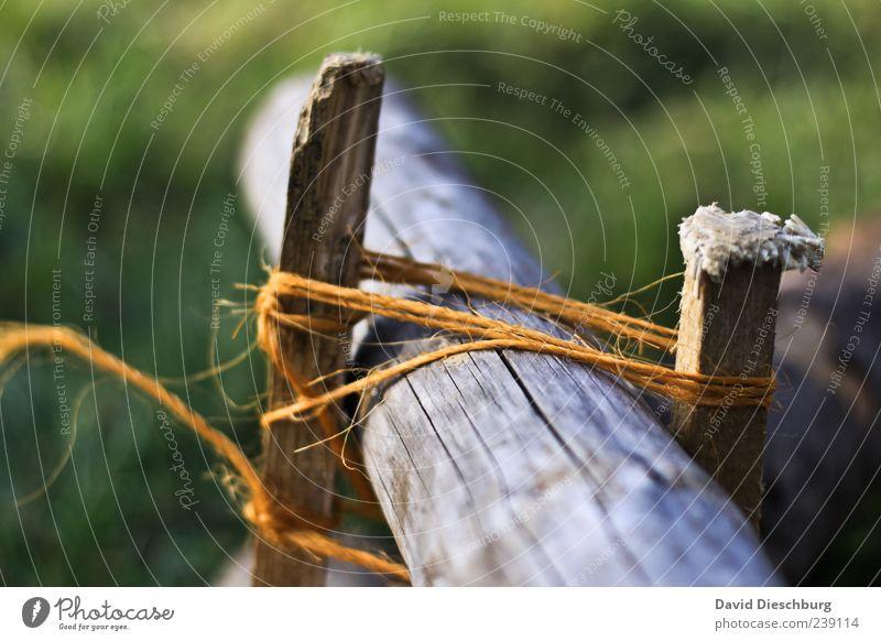 Geschaffene Verbundenheit blau weiß grün schwarz gelb Holz Seil Perspektive Sicherheit Technik & Technologie Schnur Kreativität festhalten Zusammenhalt