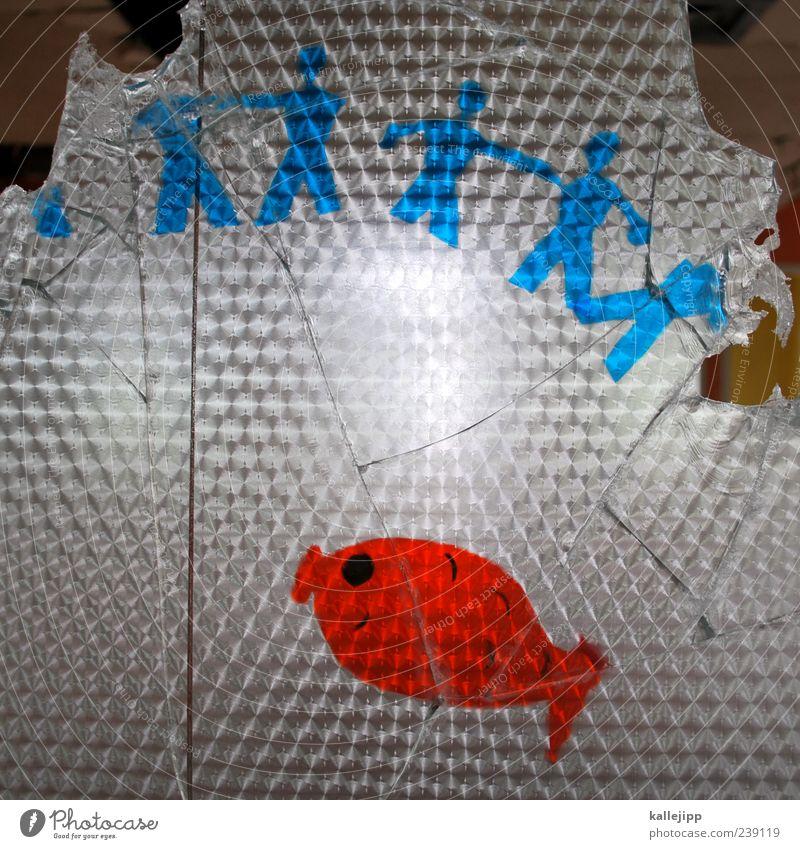 fischköppe Mensch Tier Spielen Menschengruppe Glas Kindheit Lifestyle kaputt Fisch Team Kindergruppe berühren Zeichen verfallen Gesellschaft (Soziologie) Verfall