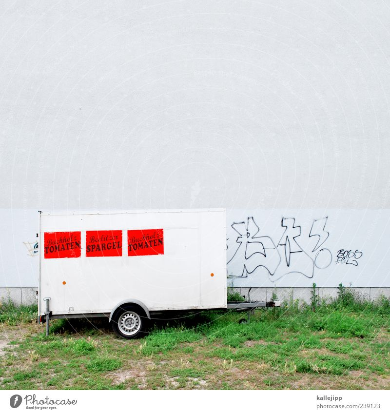 ladenhüter Ernährung Graffiti Wand Lebensmittel Gras Arbeit & Erwerbstätigkeit Fassade Schilder & Markierungen Schriftzeichen trist Gemüse Landwirtschaft Werbung Markt Wirtschaft Tomate