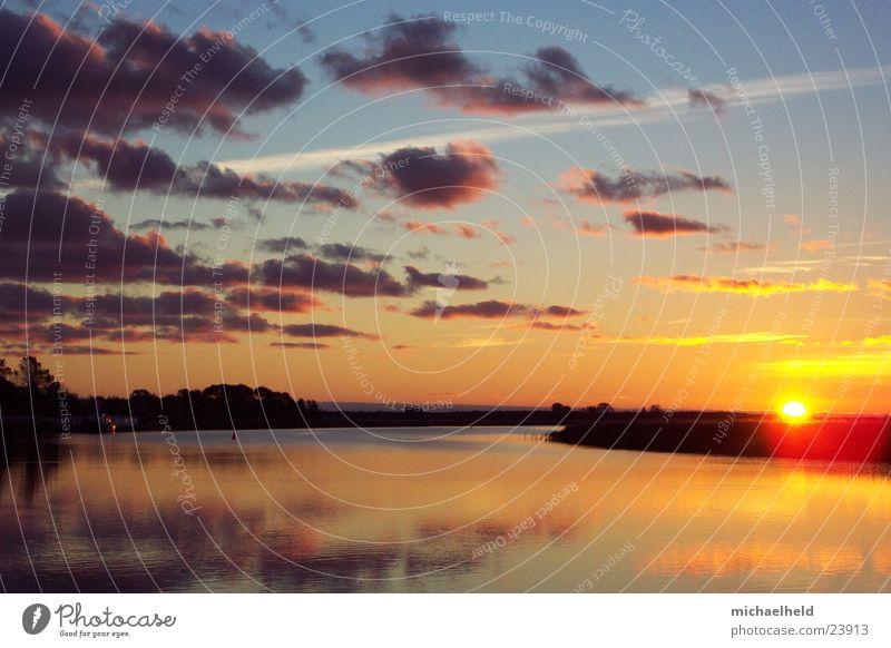 Sonnenaufgang am Meer Natur Wasser Himmel Sonne Meer Wolken Landschaft Vogel Europa Schilfrohr Ostsee Glätte Umweltschutz Zingst Vorpommersche Boddenlandschaft