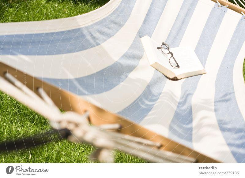 Lesen Ferien & Urlaub & Reisen Pflanze Sommer Freude ruhig Erholung Garten Freizeit & Hobby Buch Ausflug Häusliches Leben Lifestyle Streifen Brille Sommerurlaub Sonnenbad