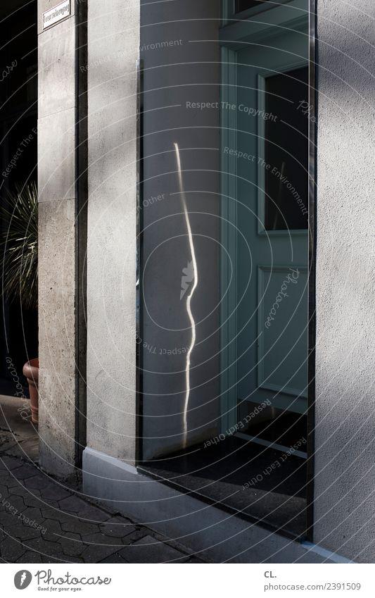 lichtspur Pflanze grün Haus Wand Wege & Pfade Mauer grau Häusliches Leben Tür Schönes Wetter Eingang Altbau Eingangstür