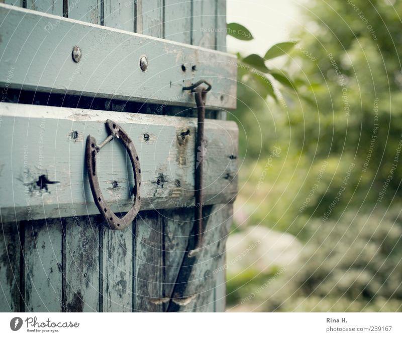 Schöne Aussicht II Sommer authentisch blau grün Lebensfreude Glück Hufeisen Glücksbringer Landleben natürlich Holztür Scheunentor Farbfoto Gedeckte Farben