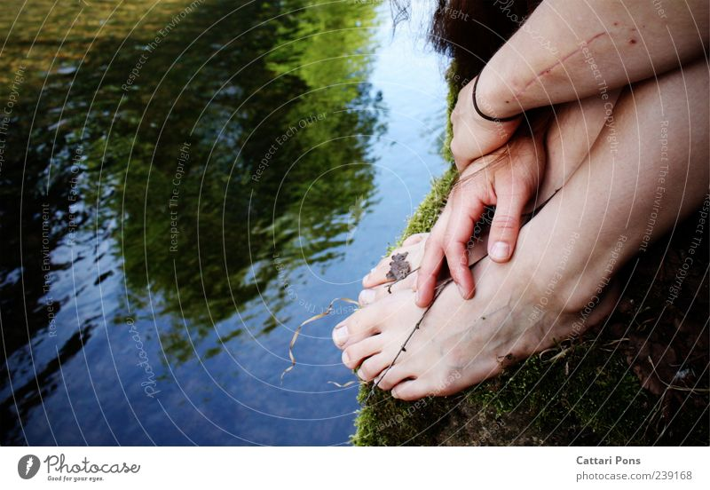 verblasste Erinnerung Park Bach Fluss Barfuß berühren festhalten hängen liegen sitzen einzigartig nass natürlich dünn Vertrauen Sicherheit ruhig Zweig