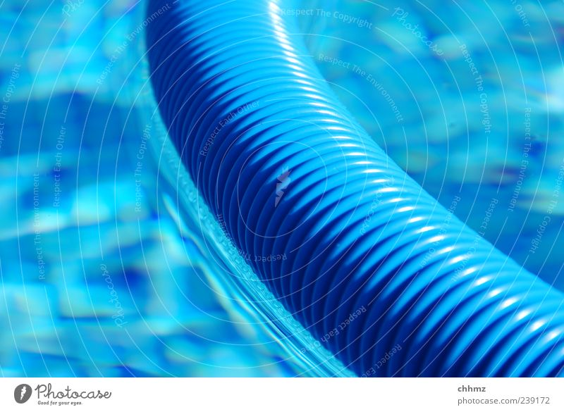 BLAU blau Wasser Schwimmen & Baden frisch Reinigen Schwimmbad Sauberkeit Kunststoff Fliesen u. Kacheln Im Wasser treiben feucht durchsichtig Schlauch kühlen Freibad Pumpe