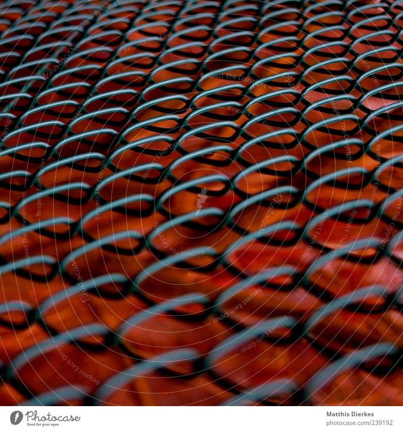 Gitter Metall alt heiß Zaun Draht Maschendraht Glut rot Farbfoto Außenaufnahme Menschenleer Tag Schwache Tiefenschärfe außergewöhnlich Strukturen & Formen