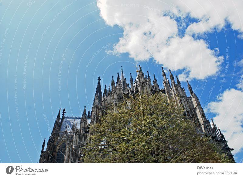Usertreffen Köln_18.06.2011 Tourismus Sightseeing Umwelt Natur Himmel Wolken Schönes Wetter Baum Kölner Dom Kirche Turm Bauwerk Gebäude Architektur Fassade