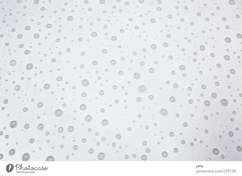 regentag Wasser weiß grau Regen liegen nass Wassertropfen viele Vor hellem Hintergrund