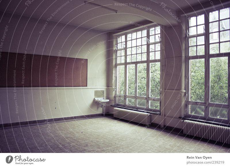 Große Fenster Industrieanlage Bauwerk Gebäude Architektur Mauer Wand Stein Glas alt Stimmung Traurigkeit Tod Einsamkeit Armut kalt Schwerpunkt Zerstörung