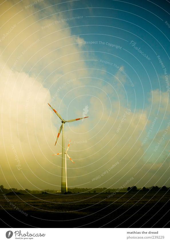 WINDRÄDER Technik & Technologie Fortschritt Zukunft Energiewirtschaft Windkraftanlage Energiekrise Umwelt Natur Landschaft Pflanze Himmel Wolken Horizont Wetter