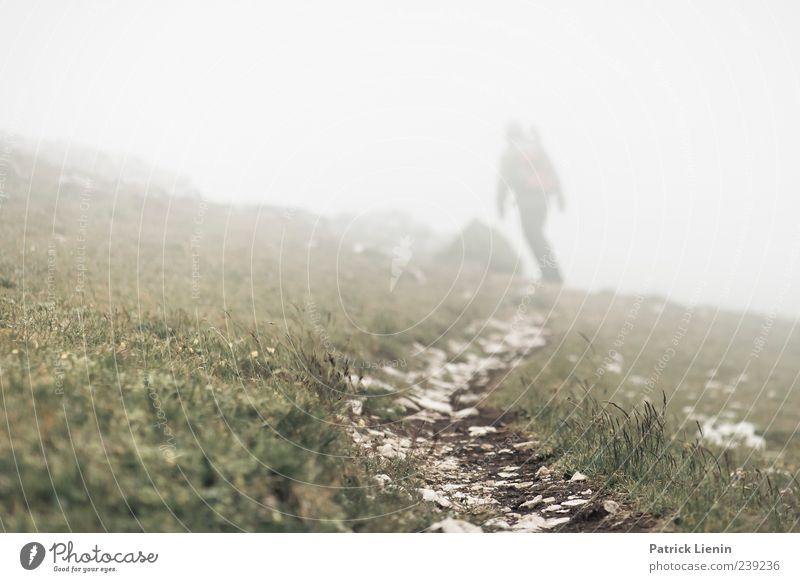 durchkämpfen Mensch Natur Umwelt Landschaft Wiese Berge u. Gebirge Freiheit Wege & Pfade Luft Stimmung Regen Erde Wetter gehen wandern nass