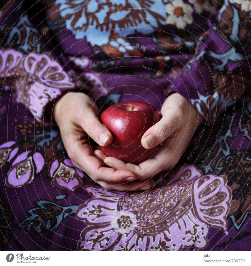 ingrid marie Lebensmittel Frucht Apfel Ernährung Bioprodukte Vegetarische Ernährung Mensch feminin Frau Erwachsene Hand 1 ästhetisch rund mehrfarbig rot Märchen