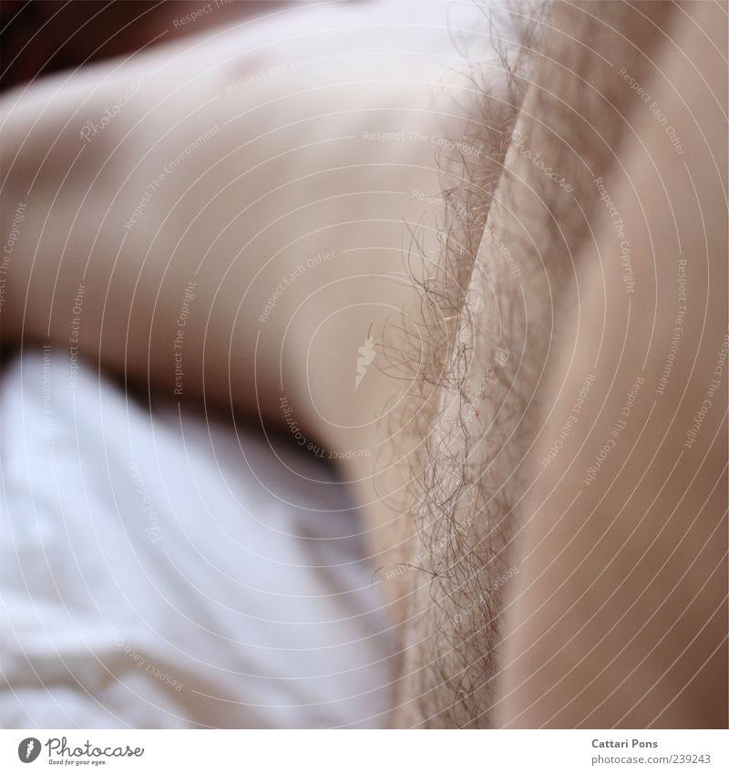 lay down Mann Erwachsene Körper schlafen lang nah dünn Gelassenheit ruhig Erholung nackt Behaarung Haare & Frisuren liegen hell Torso sanft zart unrasiert