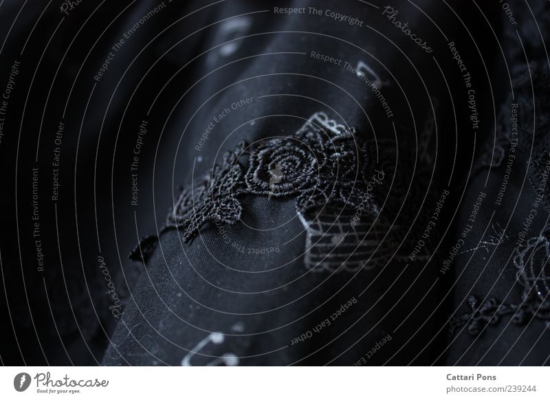 schwarze Musik Blume schwarz dunkel außergewöhnlich Rose Stoff nah hängen Spitze Gardine Musiknoten Zeile Stickereien