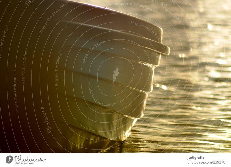 Hafen Wasser ruhig See Stimmung Wasserfahrzeug Verkehr Ostsee Abenddämmerung Wasseroberfläche stagnierend Ruderboot Fischerboot Bootsfahrt