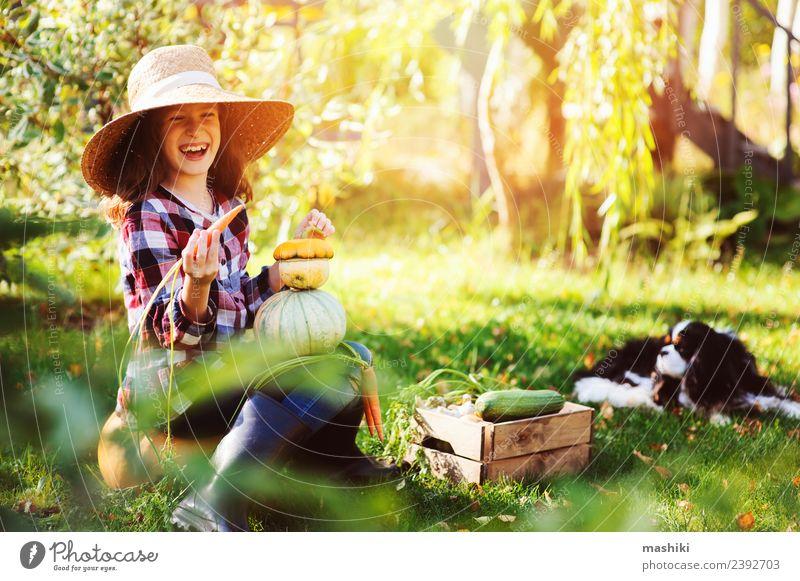 Kind Natur Hund grün Landschaft Lifestyle Herbst lustig natürlich Familie & Verwandtschaft klein Wachstum frisch Gemüse Jahreszeiten Bauernhof