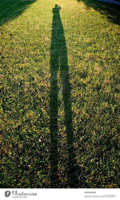 shadow long leg Mensch Natur grün Ferien & Urlaub & Reisen Pflanze gelb Landschaft Wiese Gras Garten Beine Park Wetter Zufriedenheit Freizeit & Hobby groß