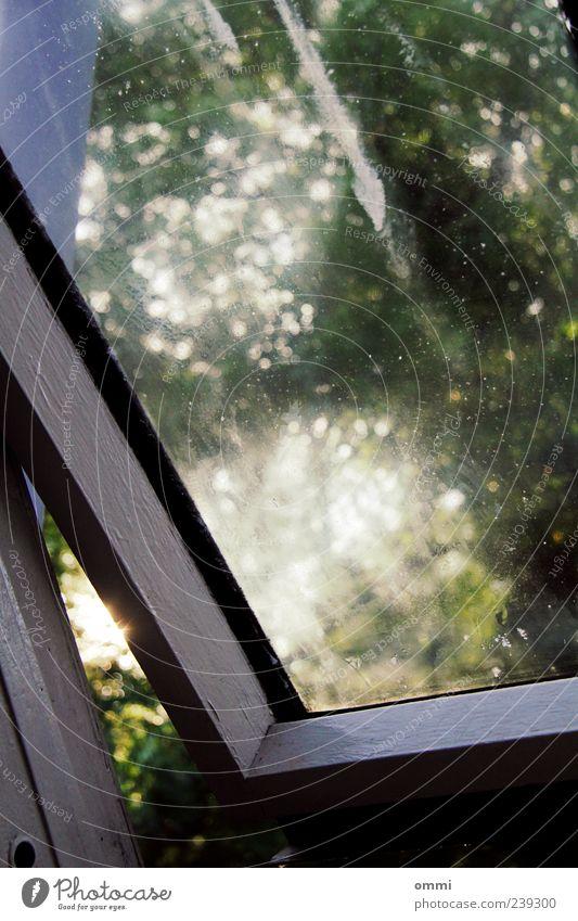 Lichtluke Fenster authentisch dreckig Glasscheibe offen Fensterscheibe Farbfoto Gedeckte Farben Nahaufnahme Menschenleer Morgen Schatten Kontrast Sonnenlicht