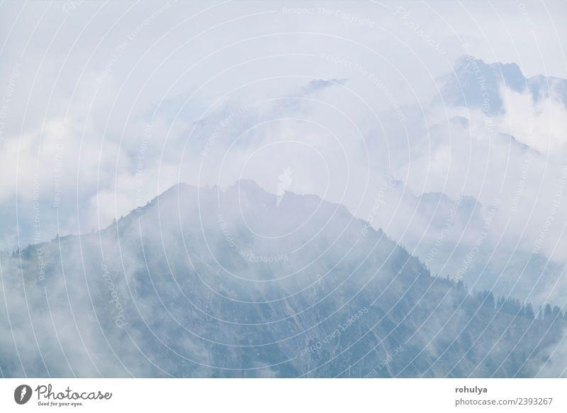 dichter Nebel in den Bergen nach Regen im Sommer Ferien & Urlaub & Reisen Tourismus Berge u. Gebirge Natur Landschaft Luft Wolken Herbst Wetter Felsen Alpen